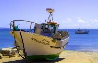 Ericeira Fisherman Village Tour