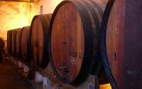 Wine Cellar in Sintra