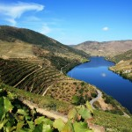 The world's greatest wine region? Douro Valley
