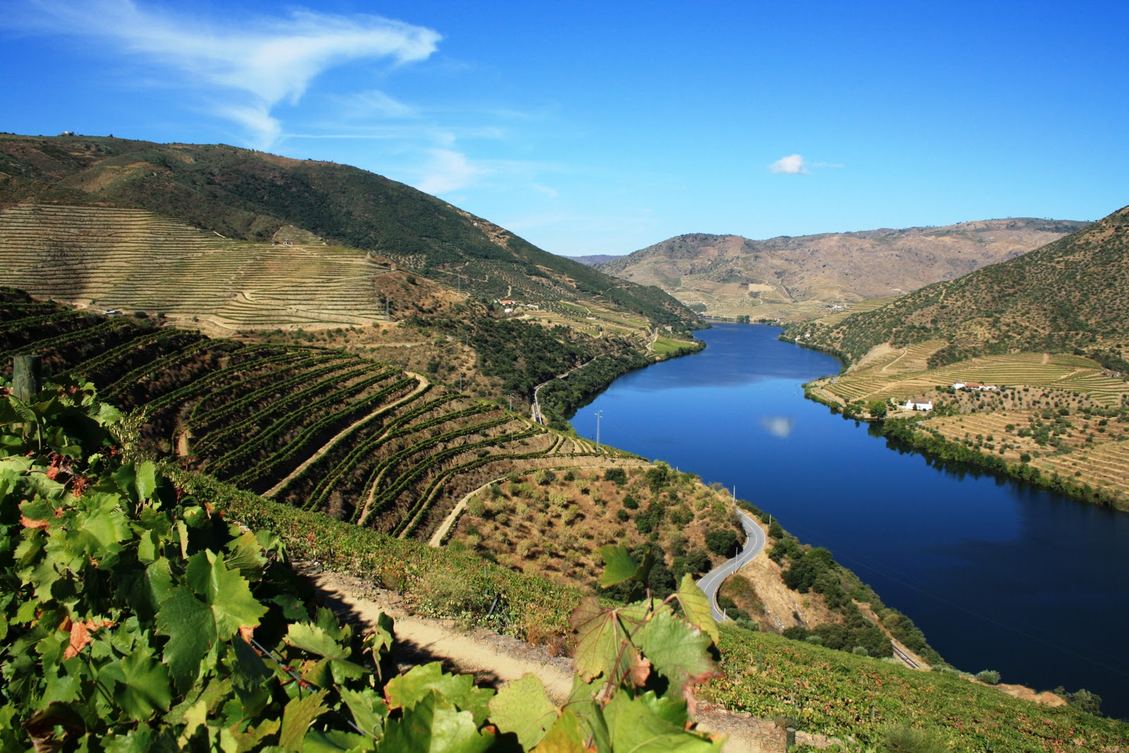 Douro-valley-Portugal