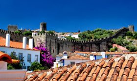 Half-Day Private Tour to Obidos and Nazare (5h)