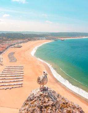Excursión privada de medio día a Nazare desde Lisboa