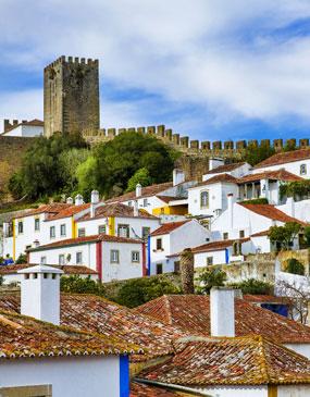 Excursión privada de medio día Castillo medieval de Obidos y pueblo