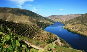 Private Transfer to Lisbon from Douro Valley with 2h Sightseeing