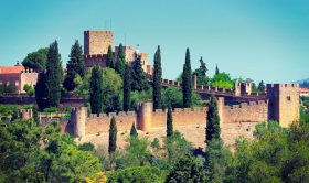 Coimbra and Tomar Private Tour - Best Highlights (Full-Day)