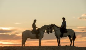 Private Horse Riding Experience + Day at the The Beach (Full-Day up to 7h)