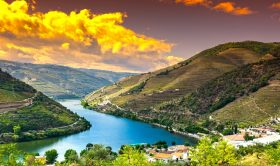 4 Day Trip: Special Private Tour to Porto and Douro Valley From Lisbon
