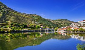 2 Day Trip From Lisbon: Porto and Douro Valley Private Tour