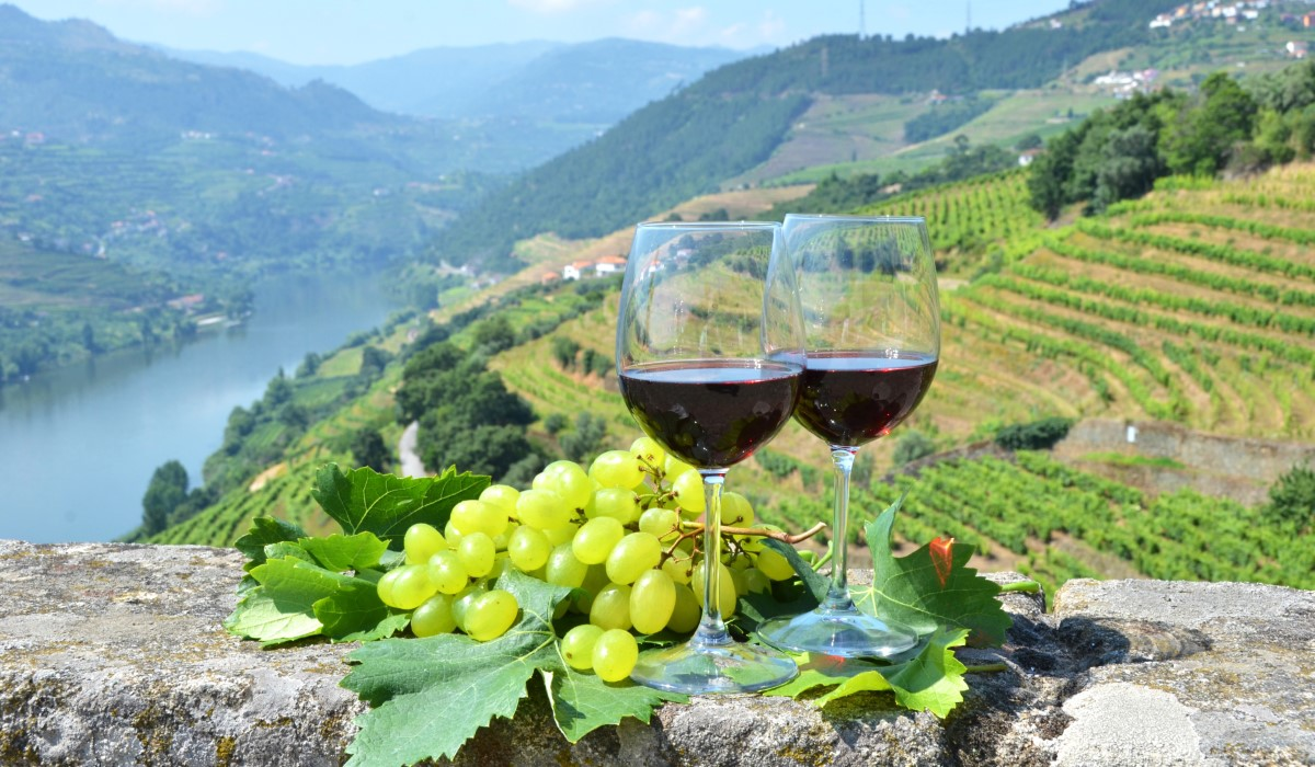 4 Day Trip: Special Private Tour to Porto and Douro Valley From Lisbon    Lisbon Private Tours